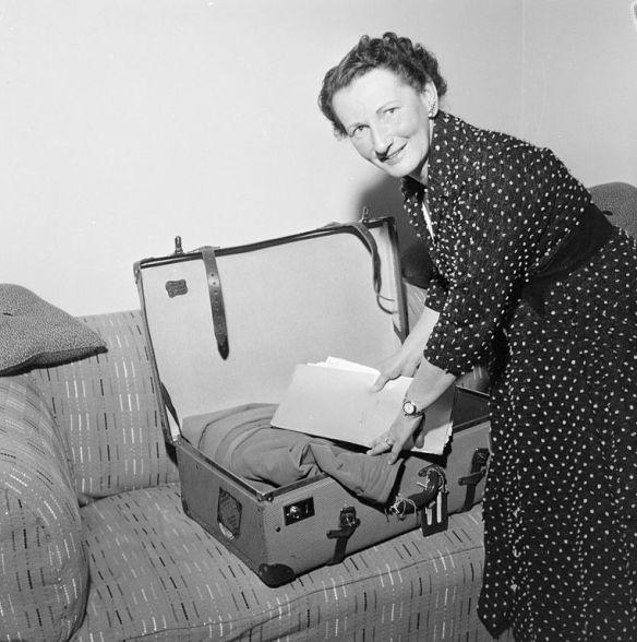 bastelschaf koffer packen
