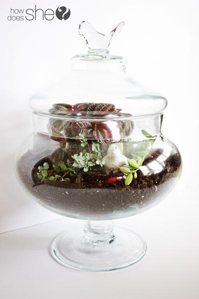 bastelschaf terrarium selbermachen