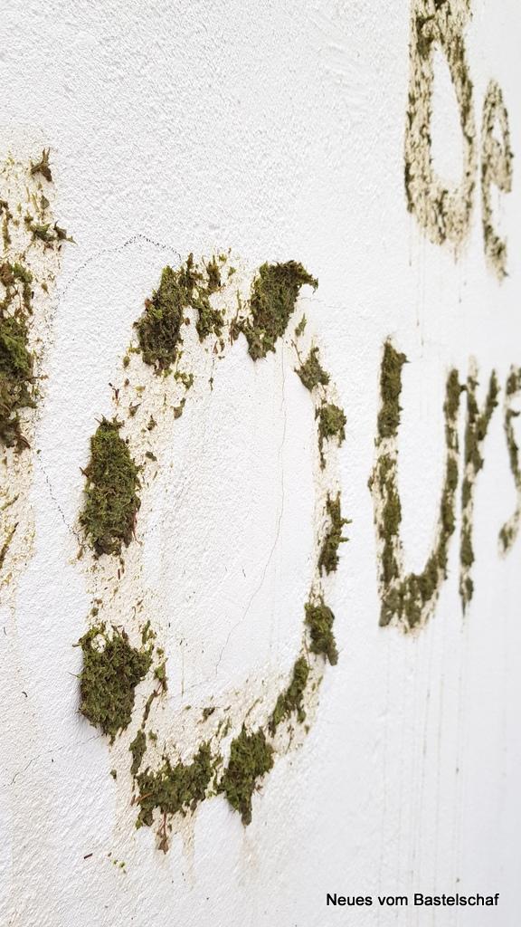 Moos Bild Graffiti Anleitung kostenlos