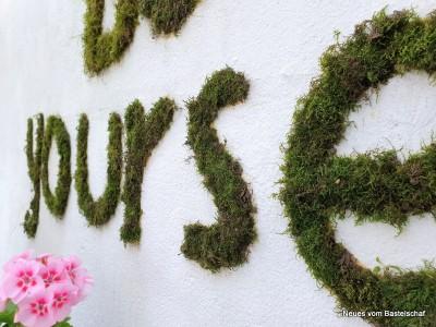 Moos Grafitti für die Wand Bastelschaf
